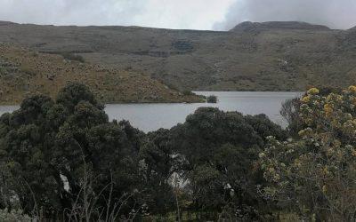 PROPONEN LLEVAR LA PROHIBICIÓN DE MINERÍA EN LOS PÁRAMOS A LA CONSTITUCIÓN (COLOMBIA)